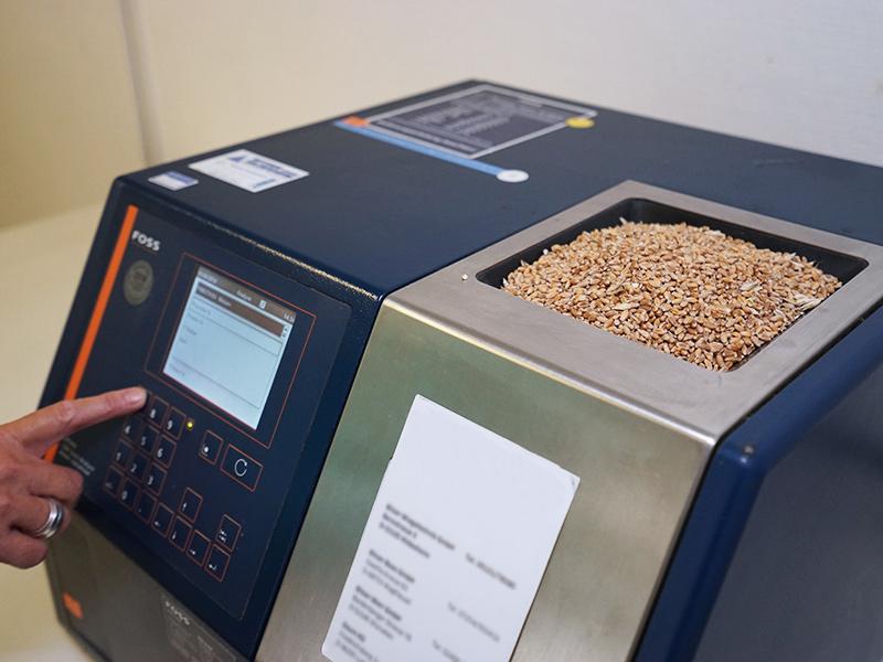 Labordienstleistungen für Qualitätskontrolle Getreide